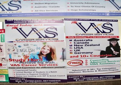 VAS5-min