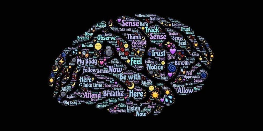 Human Brain at work